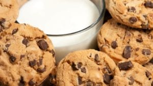 Counseling Services Cookies And Milk @ Counseling Services- 307 Frazer Street